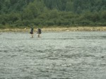 Tracy and Pete crossing the Kennebec…naked