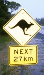 Watch out for Kangaroos