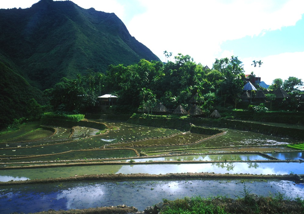Rice terraces and some traditional huts in Batad; we passed this on our way to Tapplya Waterfall