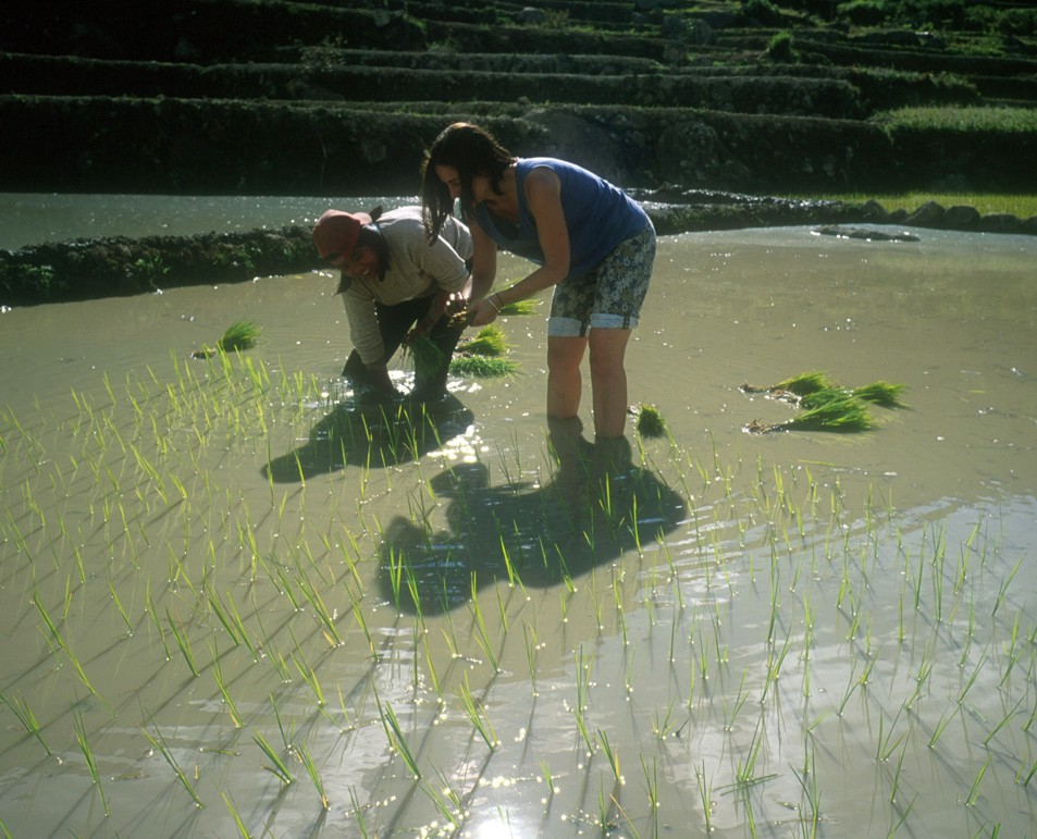 Lucie plants rice with Gloria, a native of Tanulong