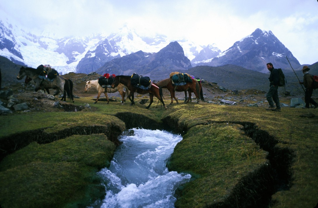 Horses crossing the stream